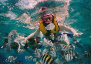 Tours for the Best Snorkeling in Mexico