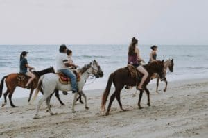 Horseback Riding in Puerto Vallarta, Nayarit